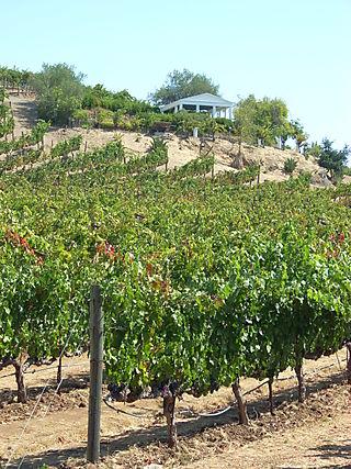 Benziger Winery Acropolis
